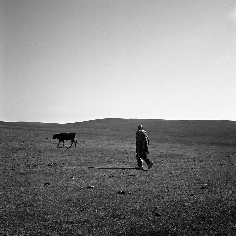 """Joanna Borowiec, """"Road"""", fotografia na papierze, 30 x 30 cm, 2013, cena: 550 zł"""